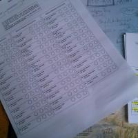 Stimmzettel online